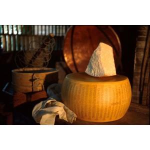 Parmigiano reggiano (parmezán) - tvrdý syr